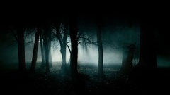 6 horror creepy dark creepy forest